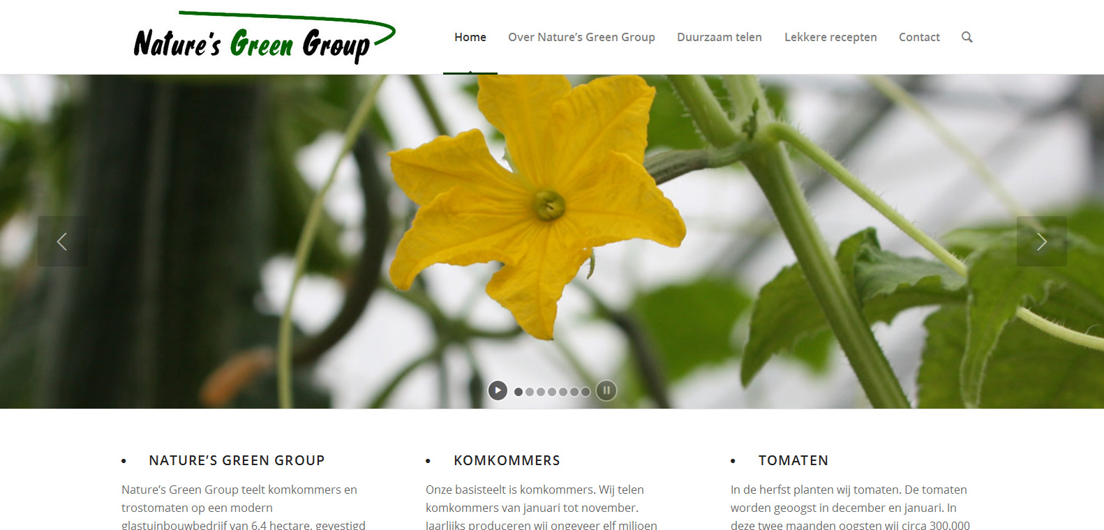 Nature's Green Group - SAMEN marketingSAMEN marketing